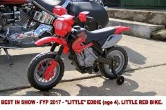15 BEST IN SHOW - FYP 2017 - LITTLE EDDIE (age 4). LITTLE RED BIKE. (