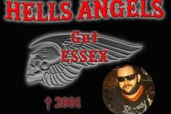 gut essex 2001
