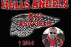 niel ashfield 2014