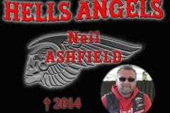 niel ashfield 2014